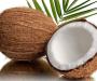 Кокосовая койра – экологически чистый наполнитель для матрасов